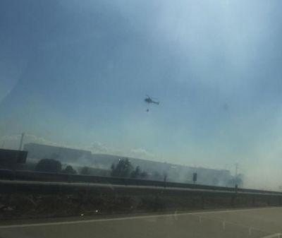 Extinguido el incendio forestal declarado junto a Schreiber Foods en Talavera