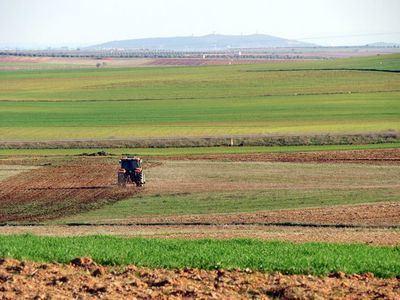 Los trabajadores agrarios por cuenta ajena en situación de inactividad pueden diferir el pago de las cuotas