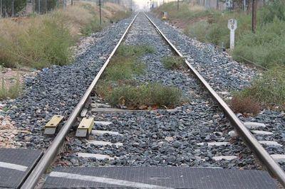 Remarcan el papel del ferrocarril en la lucha contra cambio climático y despoblación