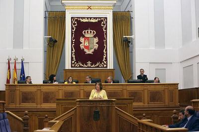 La consejera de Economía, Empresas y Empleo, Patricia Franco, durante su intervención en el Pleno regional
