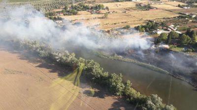 TALAVERA | Controlado un incendio forestal en la ribera del Tajo