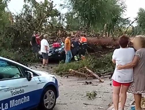 HUECAS | Heridos un hombre y un menor tras la caída de un árbol sobre su coche