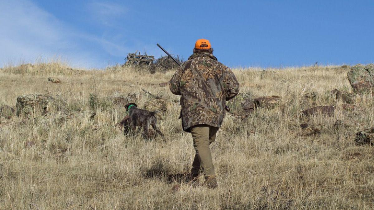 CLM | La Junta estudia abrir el cierre perimetral para los cazadores