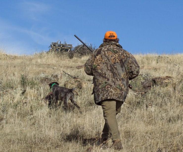 CLM | Los cazadores se oponen a la suspensión de la temporada