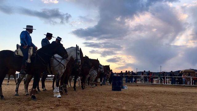 Gran éxito del Concurso Nacional de Equitación de Trabajo celebrado en Pepino