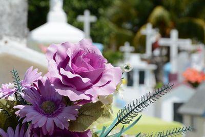 INDIGNACIÓN | Saquean un cementerio de la región