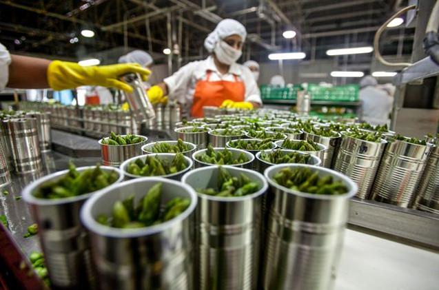 CORONAVIRUS | La industria alimentaria de CLM está funcionando a pleno pulmón en plena crisis sanitaria
