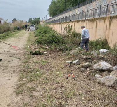 TALAVERA | Continúa la luchar contra los mosquitos