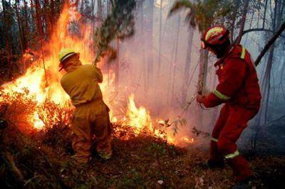 Un dispositivo completo trabaja en un incendio en San Martín de Montalbán