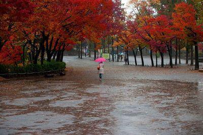 Las lluvias marcan el inicio del fin de semana