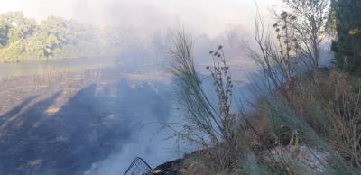 VÍDEO Y FOTOS   Infocam y Bomberos de Talavera lucharon contra el fuego