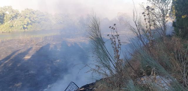VÍDEO Y FOTOS | Infocam y Bomberos de Talavera lucharon contra el fuego