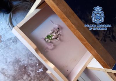 Desmantelan un punto de venta de cocaína en un bar de Talavera