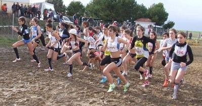 Más de 170 organismos y entidades deportivas reciben el apoyo de la Diputación de Toledo en 2019