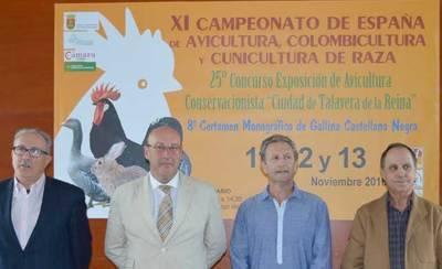 El XI Campeonato de España Avicultura se celebrará en Talavera