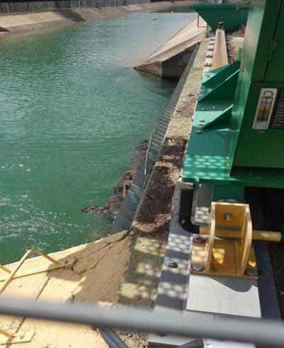 Piden a la CHT evitar el ahogamiento de especies en el trasvase Tajo-Segura