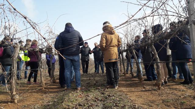 CORONAVIRUS | Un ¡bravo! para las empresas y cooperativas agroalimentarias