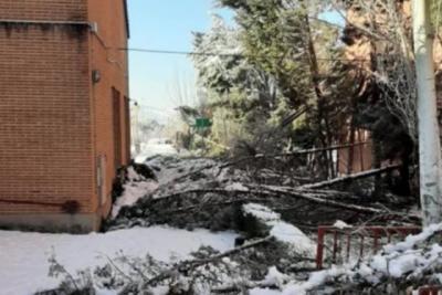 URGENTE | El Gobierno declara la zona catastrófica para los territorios afectados por el temporal
