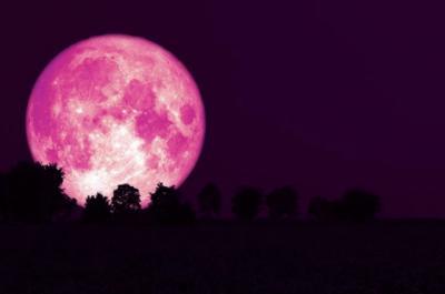 La Luna de este 24 de junio será una de las más brillantes del año (Foto: Shutterstock)