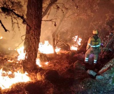 Confirman que los dos incendios forestales de Ávila fueron intencionados