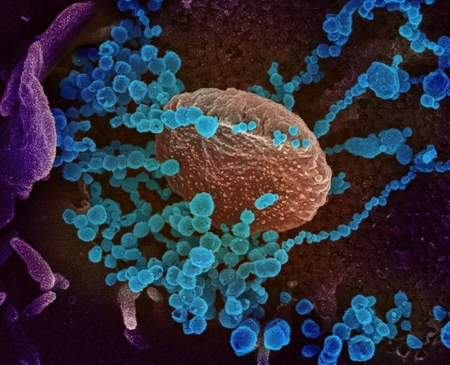 Los profesionales de la Enfermería 'preparados' para actuar frente al nuevo coronavirus