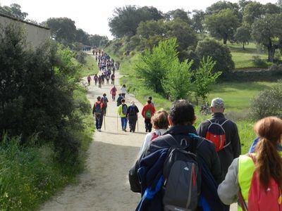 Unas 2.000 personas están inscritas para el IV Tramo del Camino de Guadalupe