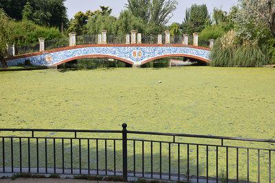 La suciedad se adueña del estanque de los patos y el lago de La Alameda