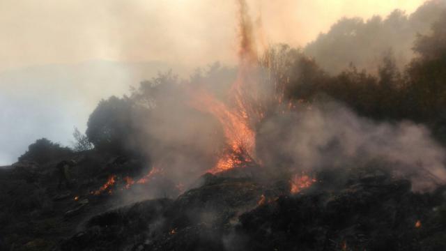 Extinguido el incendio originado en el Real de San Vicente