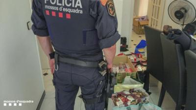 142 detenidos y 73 registros en una macrooperación policial contra la mafia armenia