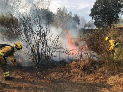 Declarado un incendio forestal en Navalcán en el que trabajan 7 medios y 33 personas