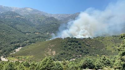 Declarado un incendio en Candeleda (Ávila)