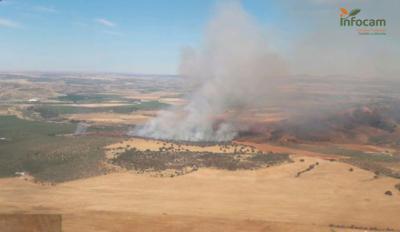 Medios aéreos y terrestres luchan contra el fuego en El Carpio de Tajo