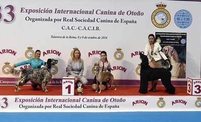 Macarena Rueda, mejor presentador joven de la 33 Exposición Canina