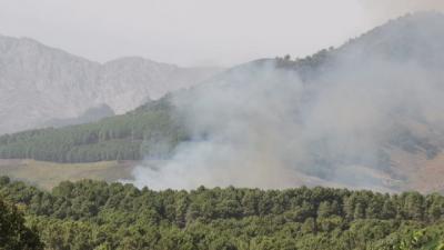 Controlado en incendio de El Raso (Candeleda)