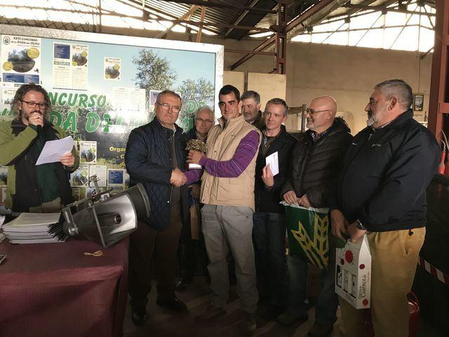 150 participantes en el 'XXVI Concurso de Poda del Olivo' de Madridejos