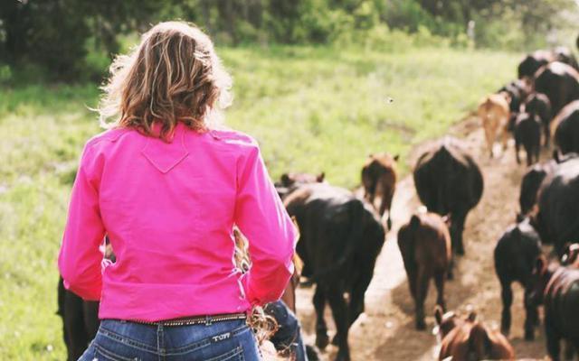 El Estatuto de la Mujer Rural de CLM entrará en vigor en 20 días