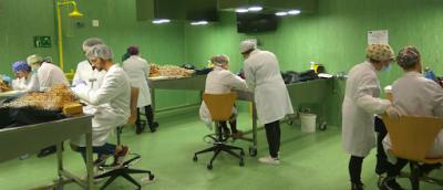 COVID-19 | Universitarios se alistan como voluntarios
