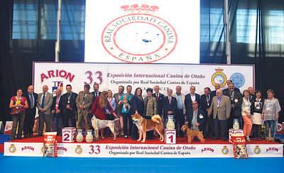 Gran éxito de la XXXIII Exposición Internacional Canina en el Ferial de Talavera