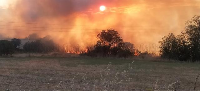 Un escandaloso incendio junto a la barriada de Patrocinio hace saltar las alarmas (VIDEO)
