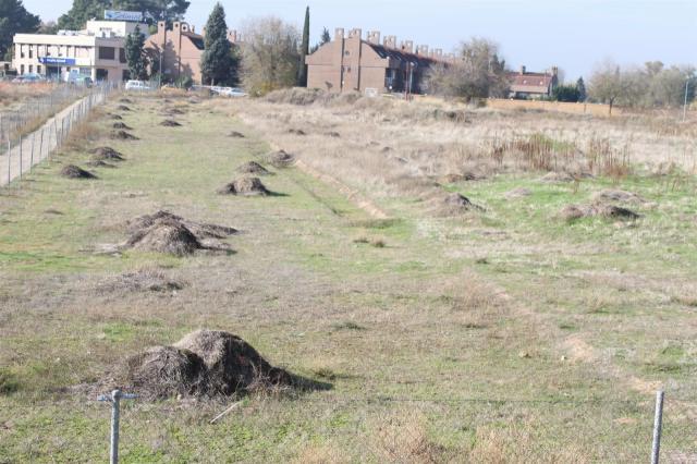 Real Fundación de Toledo insta a las administraciones a trabajar para cerrar