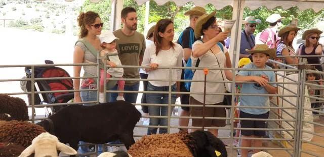 Cerca de 20.000 personas han asistido a las jornadas de puertas abiertas en El Borril