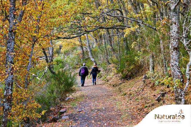 REPORTAJE   Descubre la riqueza natural de Castilla-La Mancha