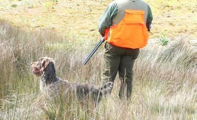 Dos heridos en sendos accidentes de caza en la provincia de Ciudad Real
