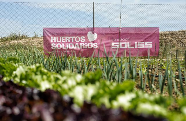 ¿Sabes lo que son los huertos solidarios de la Fundación Soliss?