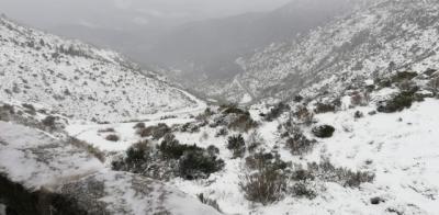 CUARENTENA   La nieve cubre el Puerto del Pico
