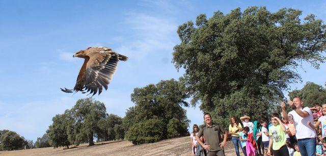 Los escolares castellano-manchegos aprenden cómo se recupera la fauna silvestre de la región