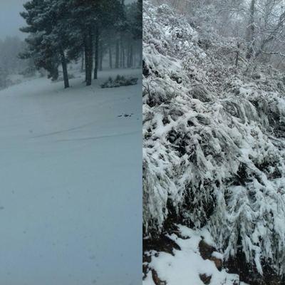 La nieve vuelve a El Piélago (IMÁGENES)