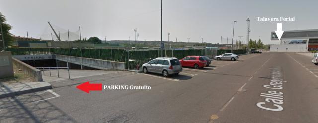 Servicio especial gratuito de autobuses y parking en Talavera por Nochebuena