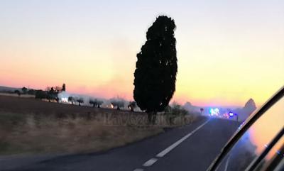 OTRO INCENDIO | Arde un olivar entre Montearagón y Cebolla (Toledo)