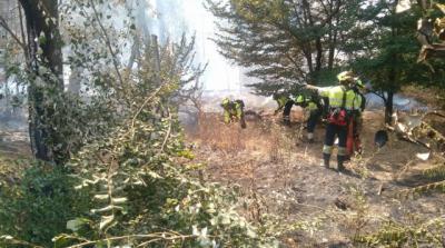 Se reaviva el fuego en la isla de los Molinos de arriba en Talavera (FOTOS)